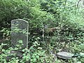Jones-Little Cemetery on June 14th 2018.jpg
