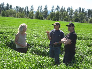 File:Julie Bailey & Shawn Donnille on organic farm for