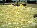 June German Flood Red Alert breakdown Rheinwehr Brisach France - Master Seasons Rhine Valley Photography 2013 - panoramio (1).jpg