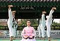 KOCIS Korea Taekwondo Namsan 19 (7628121802).jpg