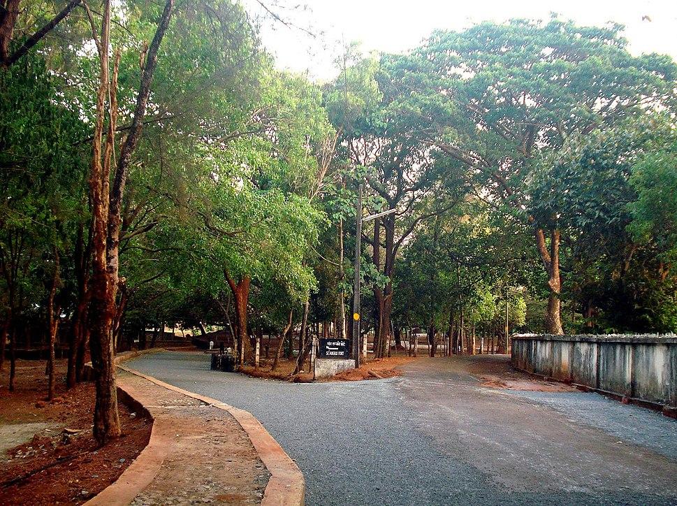 Kannur kotta road