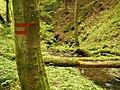 Kavinský potok (16).jpg