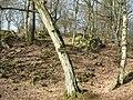 Keltischer Ringwall Heunstein bei Dillenburg - geo.hlipp.de - 35890.jpg