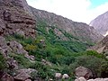 Khorasan Razavi, Unnamed Road, Iran - panoramio (4).jpg