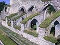 Kloster ruin - panoramio.jpg