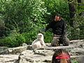 Knut y cuidador.JPG