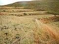 LWR2013 - panoramio (47).jpg