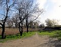 Laboratornaya Str., Melitopol, Zaporizhia Oblast, Ukraine 02.JPG