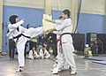 Laila Houssaini, left, kicks through a wooden board during a demonstration by the Afghanistan National Taekwondo Federation Junior Team at the International Security Assistance Force Headquarters gym in Kabul 111022-A-EM852-124.jpg