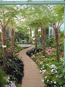 Laken greenhouse inside 2.jpg