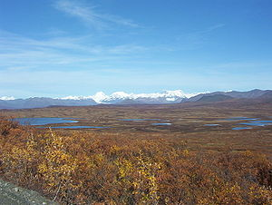 Kettle (landform) - Numerous kettle lakes border the Denali Highway in Alaska