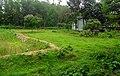 Landscape beside the Soil Resource Development Institute (01).jpg