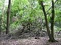 Landschaftsschutzgebiet Pferdebruch Eickholt Melle Datei 5.jpg