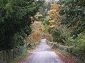 Lane to Broneirion - geograph.org.uk - 1013680.jpg
