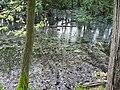 Langenfeld Nähe Haus Graven 0027.jpg