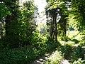 Langenfeld Schwanenmühle 0013.jpg