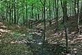 Las - panoramio (18).jpg