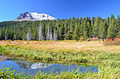 Lassen and Hat Creek (15425891776).jpg