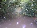 Leithakanal in Götzendorf an der Leitha 03.jpg