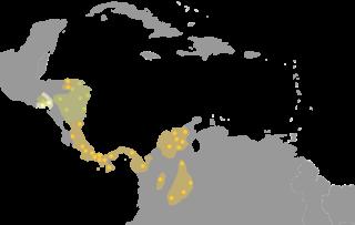 Macro-Chibchan languages