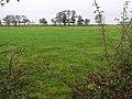 Lennymore Townland - geograph.org.uk - 1535962.jpg
