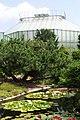 Liberec, Botanická zahrada, jezírko.jpg
