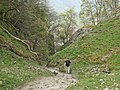 Limestone Way at the bottom of Cave Dale - geograph.org.uk - 416908.jpg