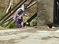 Little girl runs for chickens.jpg
