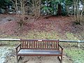 Long shot of the bench (OpenBenches 3928-1).jpg