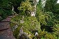 Luzern Villa Bellerive hidden statue.jpg