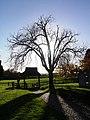 Lych-gate, St Mary's Churchyard - geograph.org.uk - 282546.jpg