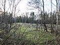 Mākoņkalna pagasts, Latvia - panoramio - BirdsEyeLV (12).jpg