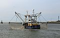 MV O82 Nautilus R05.jpg