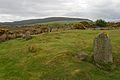 Machrie Moor stone circle 02.jpg