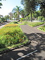 Madeira em Abril de 2011 IMG 1780 (5663223665).jpg