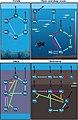 Main marine nitrogen cycles.jpg