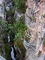 Maligne Canyon 馬利聶峽谷 - panoramio.jpg
