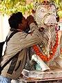 Man Pays Homage to Garlanded Cow Statue - Banaras Hindu University - Varanasi - Uttar Pradesh - India (12519462165).jpg