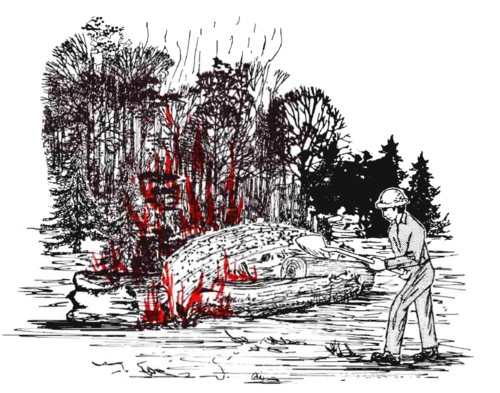 Man in forest for Heat Conduction and Wildland Fires 2010-08-17.png