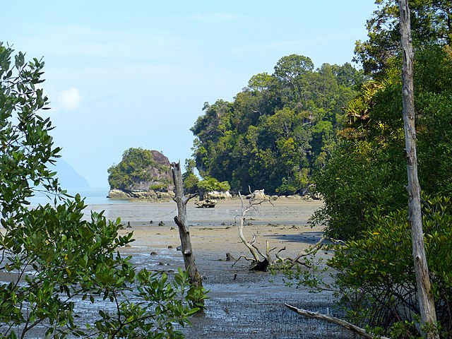 Nationalpark Bako