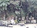Margem do rio Itajaí.jpg