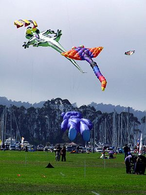 Marina Green - Kites at Marina Green.