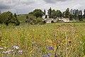 Meadow (3798411198).jpg