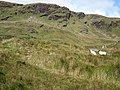 Meenaguse Mountain - geograph.org.uk - 952346.jpg