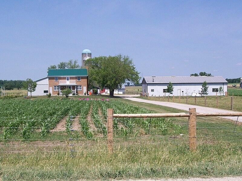 Farm - foto di Jfvoll