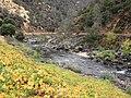 Merced River Near Yosemite National Park, California.jpg