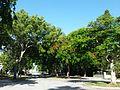 Miami, FL Bay Shore Historic District road.jpg