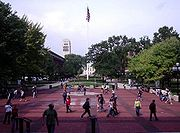 The Central Campus Diag, viewed from the Graduate Library, looking North.