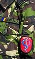 "Militar din Divizia 2 Infanterie ""GETICA"".jpg"