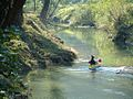 Mirna river Croatia.jpg